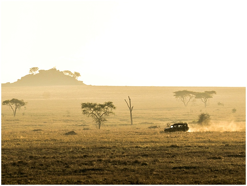 game drive in Kenya