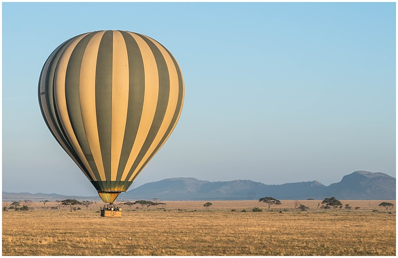 hot air balloon over African plains