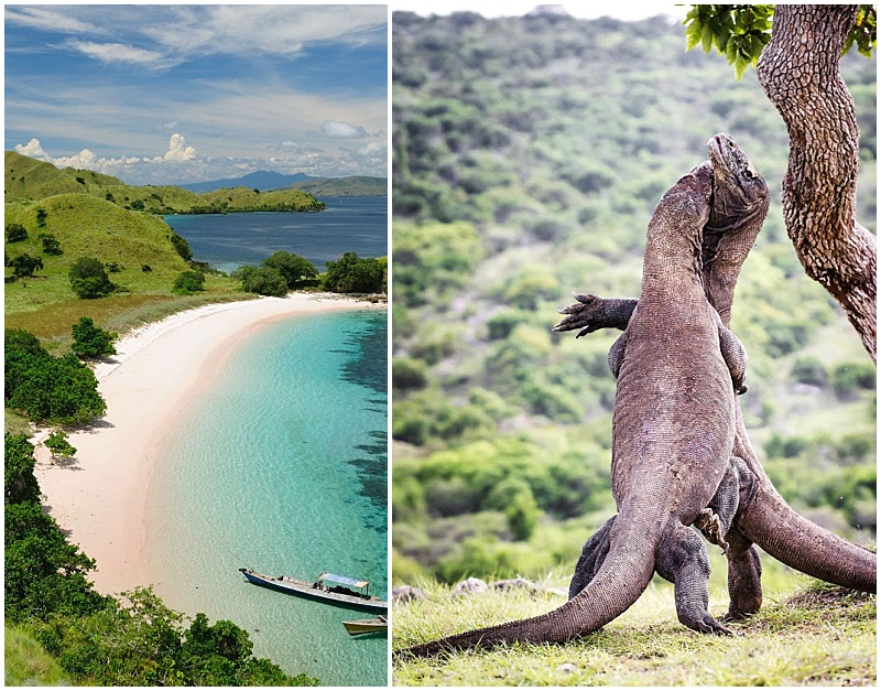 Komodo Island Rinca beach