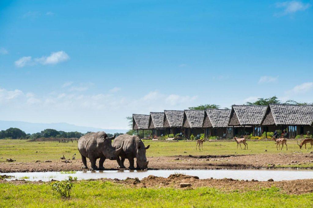 sweetwater-serena-camp-Kenya